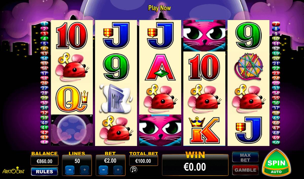 Slots in streaming StingBet riferiti